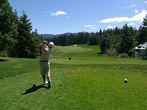 300px-Golfer_swing[1]